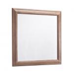 ventura_mirror